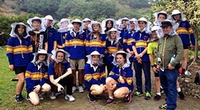 A group of students wearing protective bee headwear.