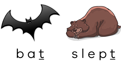 image of a bat and sleeping bear