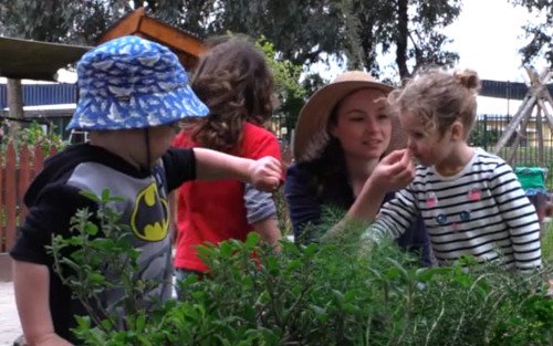 Group of children smeling plants in a garden