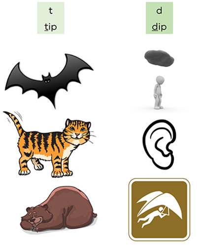 images of a bat, tiger, sleeping bear, figure under a cloud, ear and glider