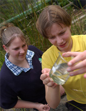 2 students with a beaker half full of water