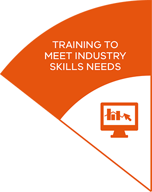 Training to meet industry skills needs